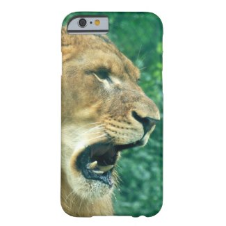 Welcome to Animal Cognizance: A Lions Roar Barely There iPhone 6 Case   Zazzle