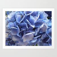 blue garden flower print