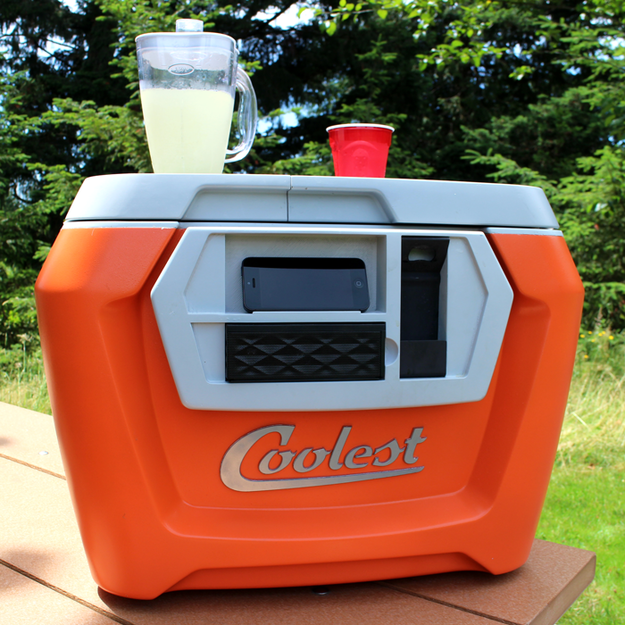Neat Beach Cooler Will Your Mind