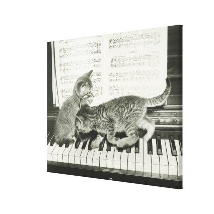 two_kitten_playing_on_piano_keyboard_b_w_canvas-rf99dc91b0bde454fa3fc671287615490_ff5je_xwzoe_425