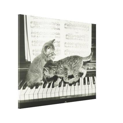 two_kitten_playing_on_piano_keyboard_b_w_canvas-rf99dc91b0bde454fa3fc671287615490_xk88u_xwzpz_425